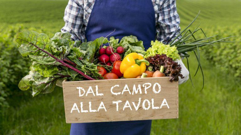 """Venerdì 24 luglio si parla di agricoltura: """"Dal Campo alla Tavola"""""""
